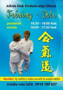 aikido-seminar-ts-deti